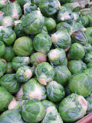 Brussels sprouts on Commercial Drive