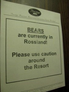 Bears are in Rossland