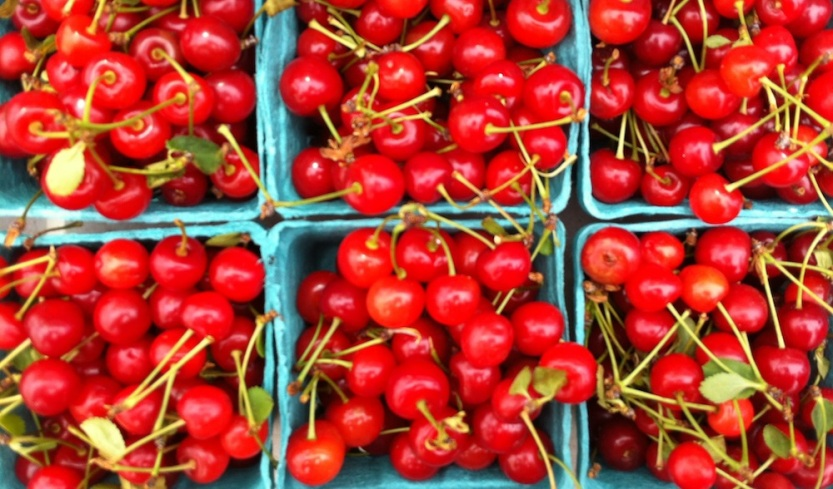 Sour cherries at the Brooklyn Farmers' Market